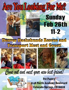 Meet & Greet at Pet Pantry NE CoSprings-Academy Place*Feb 26 2017*11-2 @ Pet Pantry - NE CoSprings - Academy Place | Colorado Springs | Colorado | United States